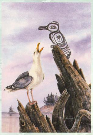Seagull, Sue Coleman
