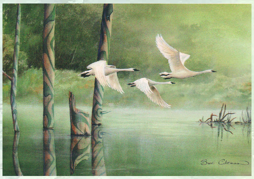 Signature of the Swans, Sue Coleman
